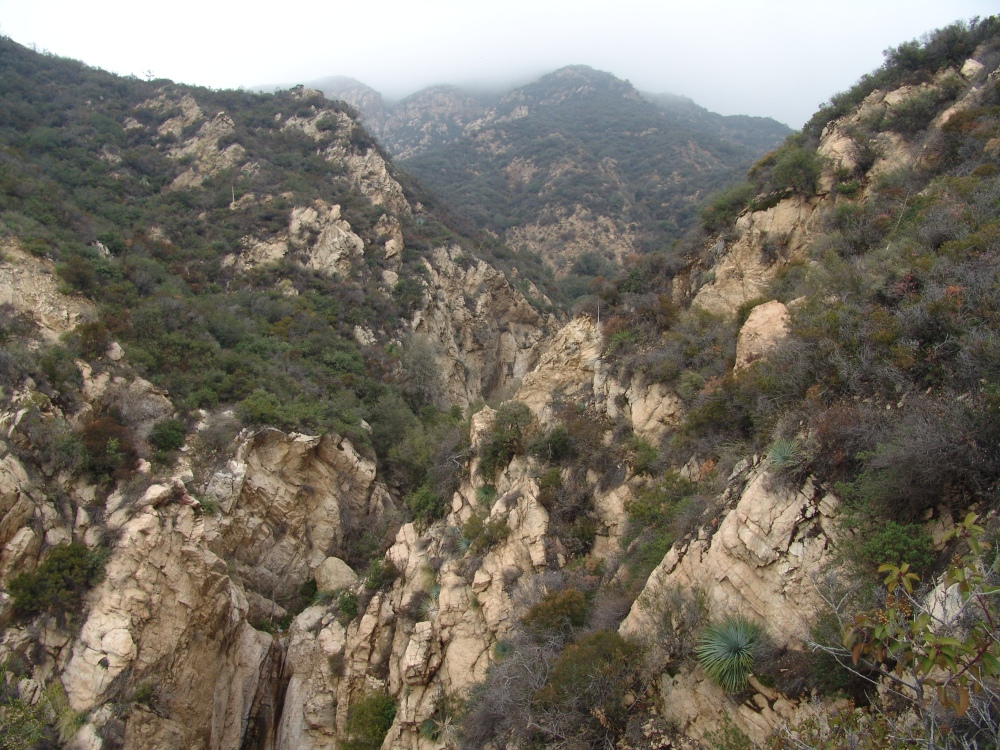 The fog over Rubio Canyon. Photo by: Denise Salcedo. Jan 2016.
