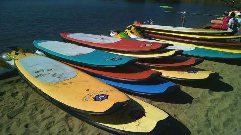 IMG_paddleboards